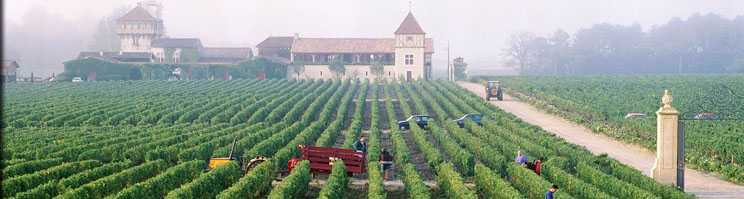Harvesting Smith Haut Laifitte
